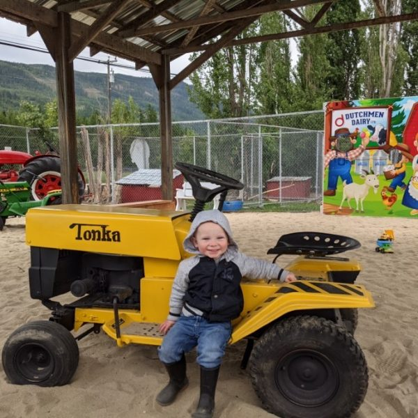 little boy with yellow tonka tractor, D Dutchmen Dairy, Sicamous BC